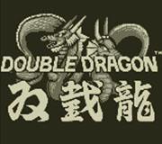 Double Dragon®
